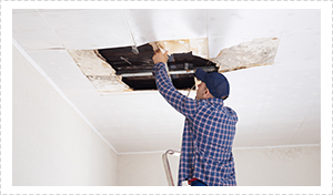Insurance Repairs - House Painter - Brisbane